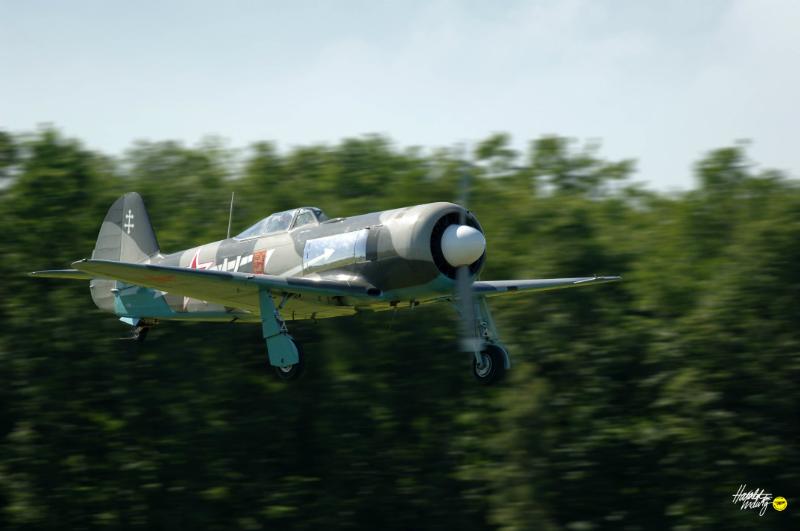 yak-11-ex-dague_04