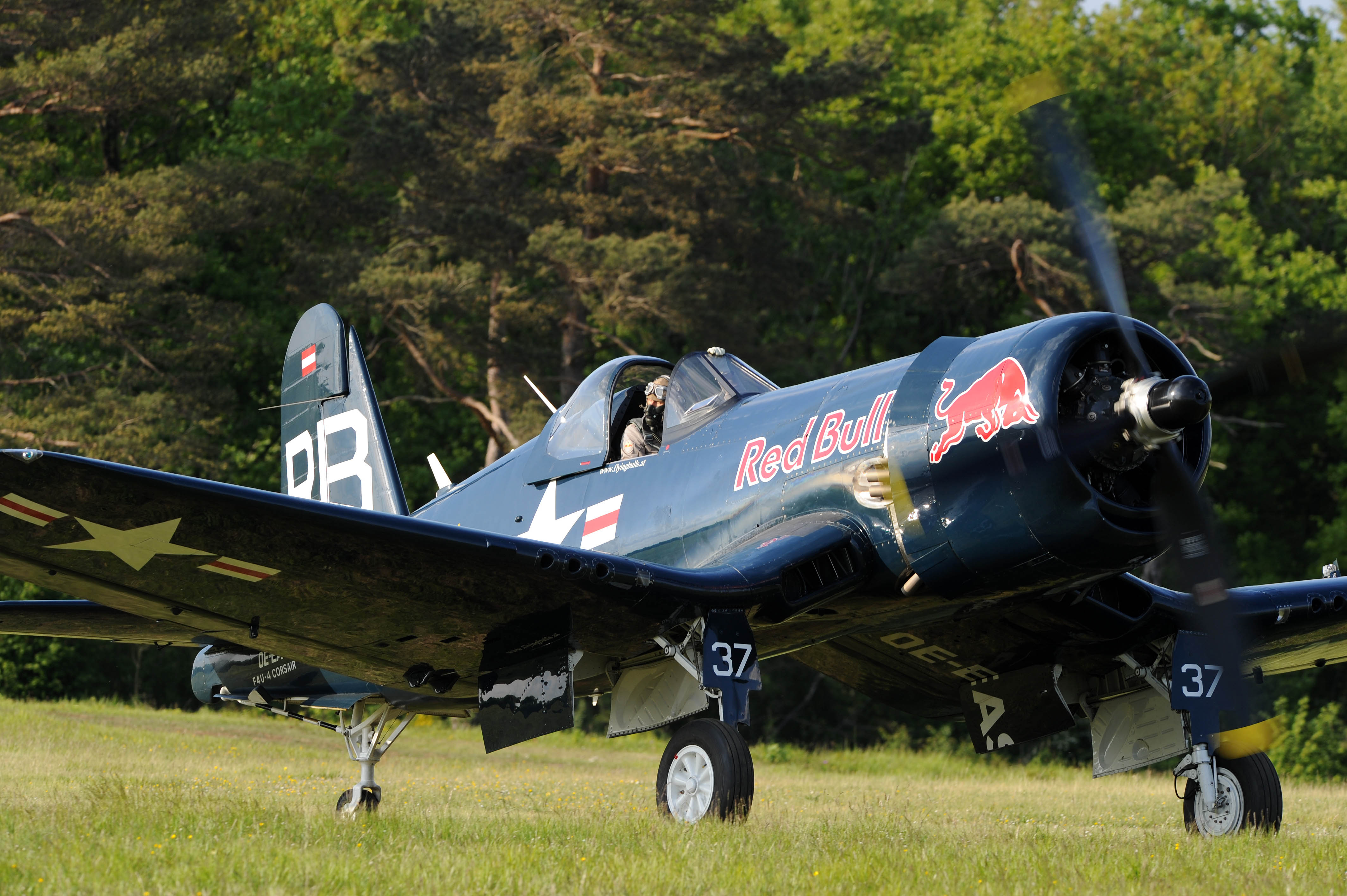 corsair-f4u-4-red-bull_goujon_05_0