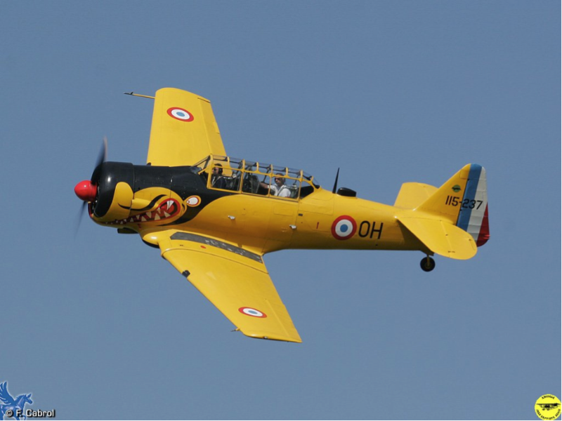 nat6-texan