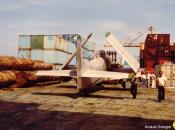 skyraider1